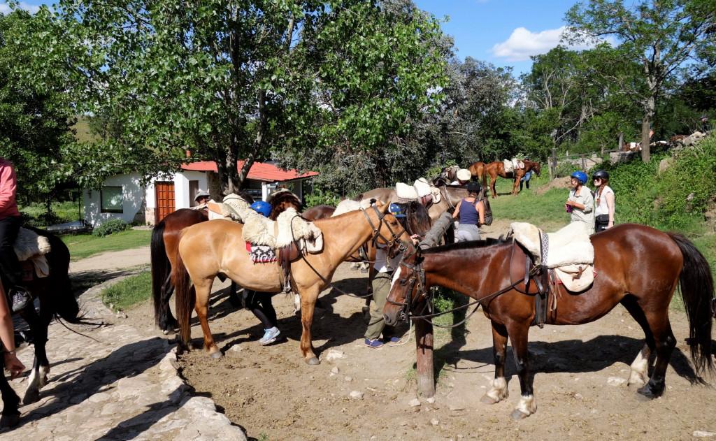 Reiten in Argentinien