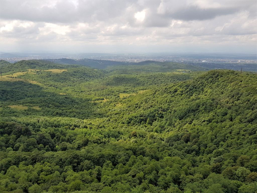 Sataplia Naturpark Georgien